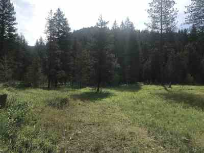 Newport Residential Lots & Land For Sale: Bead Lake Rd