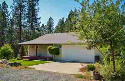 Spokane County, Stevens County Single Family Home For Sale: 1404 S Gennessee Dr