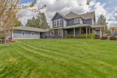 Single Family Home For Sale: 3915 S Long Rd