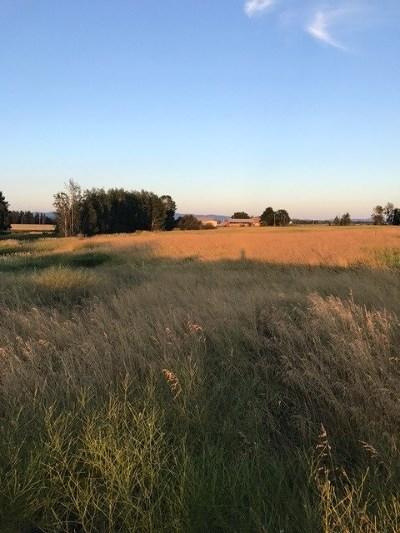 Deer Park Residential Lots & Land For Sale: 35703 N Arlington Rd