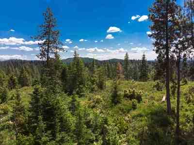 Spokane Residential Lots & Land For Sale: Nka N Moody Ln
