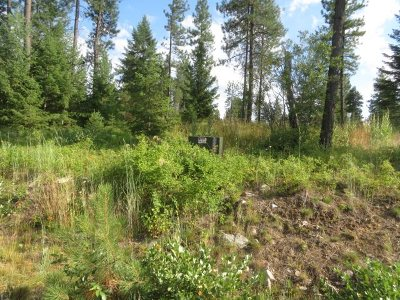 Residential Lots & Land For Sale: 4855 Forest Haven Way #Parcel E