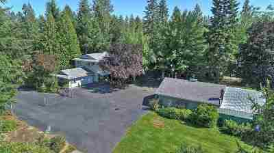 Spokane Single Family Home For Sale: 3920 S Merryweather Rd