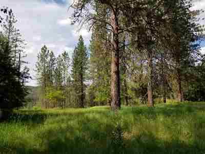 Spokane Residential Lots & Land New: 11521 N Kathy Dr