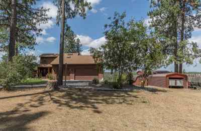 Spokane Single Family Home New: 7202 S Oak Rd
