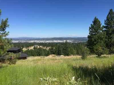 Spokane Residential Lots & Land New: S Park Rd