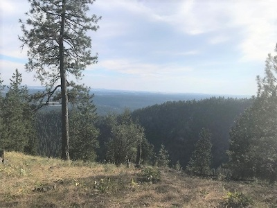 Spokane Residential Lots & Land For Sale: 6717 W Lookout Mountain Ln