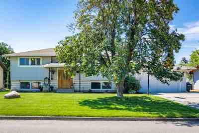 Spokane County Single Family Home New: 12414 E Skyview Ave