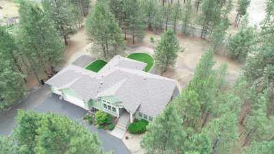 Nine Mile Falls WA Single Family Home New: $425,000