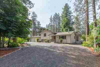 Nine Mile Falls WA Single Family Home New: $279,950