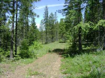 Elk Residential Lots & Land For Sale: X Bridges Rd