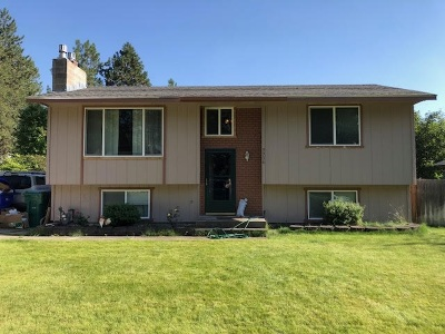 Mead Single Family Home For Sale: 3906 E Vulcan Rd