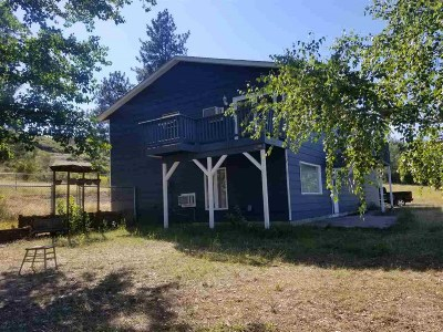 Nine Mile Falls Single Family Home Ctg-Inspection: 18217 N South Bank Rd