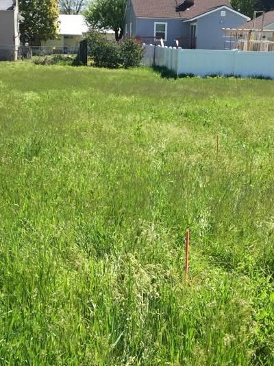Spokane Valley Residential Lots & Land For Sale: 14418/20 N Heroy Ln