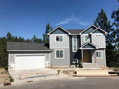 Spokane Single Family Home For Sale: 7720 E Saphire Ln