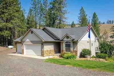 Single Family Home For Sale: 47861 E Riverview Ln