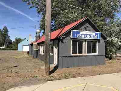 Medical Lk Multi Family Home For Sale: 711 E Lake St