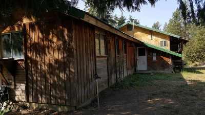 Spokane County, Stevens County Single Family Home For Sale: 2973 Bakie Rd