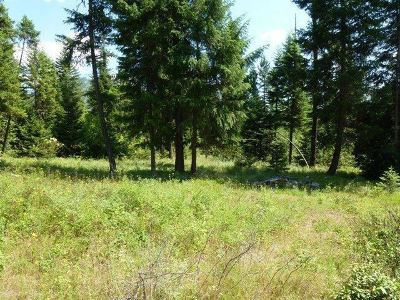 Cusick Residential Lots & Land For Sale: Lot 3 Riverbend Meadows