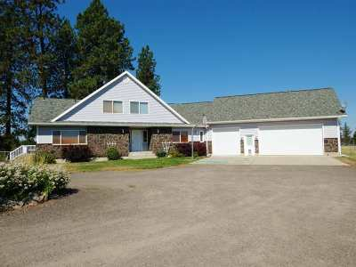 Spokane County Single Family Home New: 16517 S Dover Rd