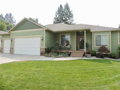 Spokane Valley Single Family Home New: 12410 E Aunnic Ln