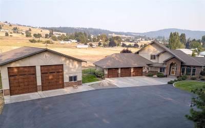 Spokane Single Family Home For Sale: 5402 E 29th Ave