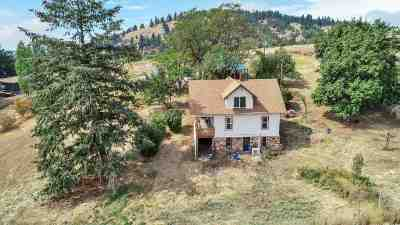 spokane Single Family Home For Sale: 10403 S Kiesling Rd