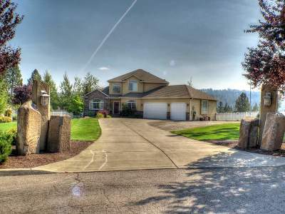 Spokane Single Family Home For Sale: 5623 S Pierce Rd