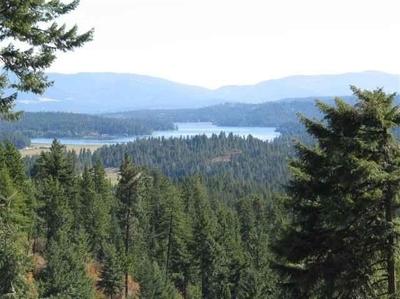 Spokane County, Stevens County Single Family Home For Sale: Nna Singing Hills Rd