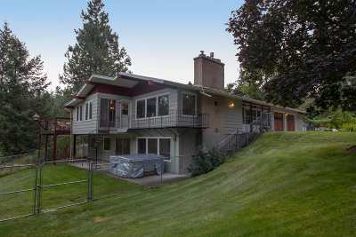 spokane Single Family Home New: 12621 E Apache Pass Rd