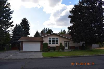 Single Family Home For Sale: 4414 S Cook St