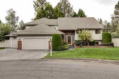 Spokane Single Family Home For Sale: 4920 S Pittsburg St