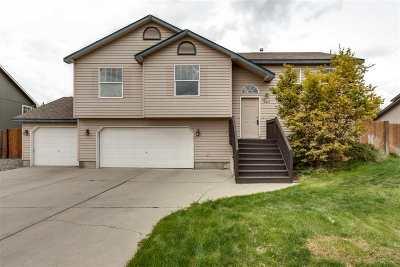 Spokane Single Family Home For Sale: 18403 E 9th Ave