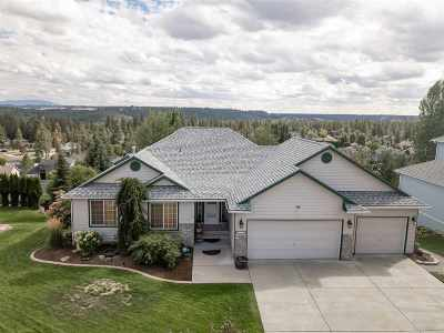 Spokane Single Family Home For Sale: 916 E Wellington Dr