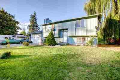 Nine Mile Falls WA Single Family Home For Sale: $240,000