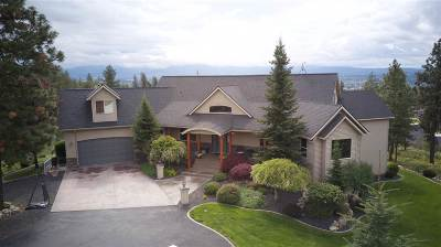 Spokane County Single Family Home New: 5730 N Thierman Rd