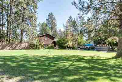Nine Mile Falls Single Family Home For Sale: 10946 W Sagewood Rd