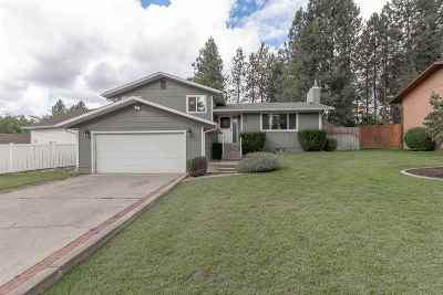 Spokane Single Family Home Ctg-Inspection: 407 E St Thomas Moore Way