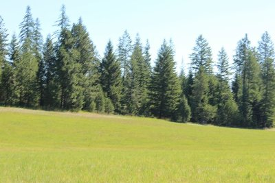 Newport Residential Lots & Land New: 1110 Stohr Rd