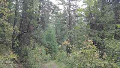 Clayton Residential Lots & Land For Sale: Xxxx Buck Creek Rd #xxxxBuck