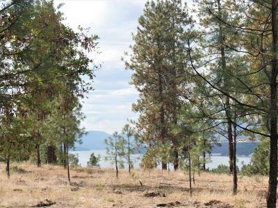 Kettle Falls Residential Lots & Land For Sale: Lot 105 Old Kettle Rd