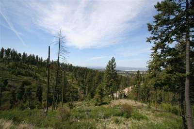 Spokane Residential Lots & Land Ctg-Inspection: 5817 S Girard Ln #Approx.