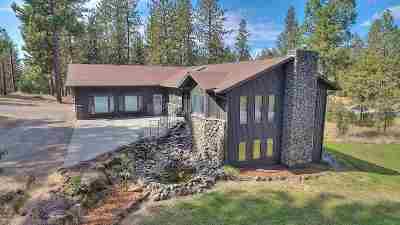 Spokane County, Stevens County Single Family Home New: 11609 E Valleyford Ave