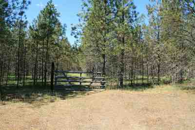Chattaroy Residential Lots & Land For Sale: Lot 16 N Bruce Rd