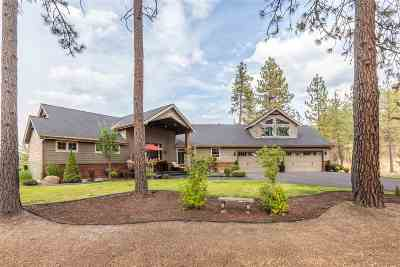 Nine Mile Falls WA Single Family Home For Sale: $829,000