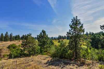 Spokane Residential Lots & Land New: 3801 W Grandview Ave