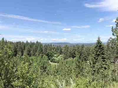 Spokane Residential Lots & Land New: Dr