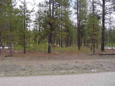 Tumtum Residential Lots & Land For Sale: 5591 N Corkscrew Canyon Rd