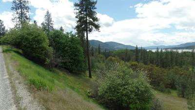 Kettle Falls Residential Lots & Land For Sale: Lot 206 Old Kettle Rd
