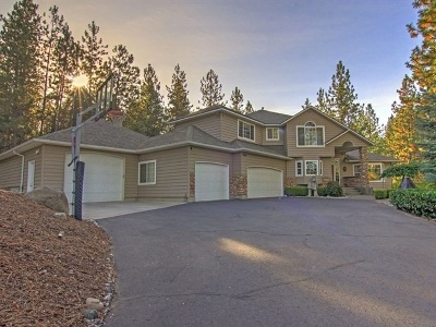 Veradale Single Family Home For Sale: 4127 S Best Ln